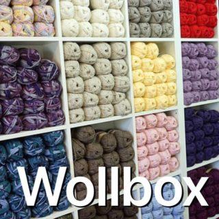 Wollbox  🧶 #wollbox #wallbox #wallboxcharging #elektroauto #handarbeit #stricken #mobilerstrickautomat #wortschöpfung #neologismus #rechtschreibpunk #verprecher #denglisch